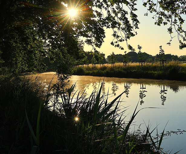 canal_du_midi02